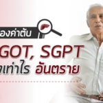 ส่องค่าตับ SGOT, SGPT สูงเท่าไร อันตราย